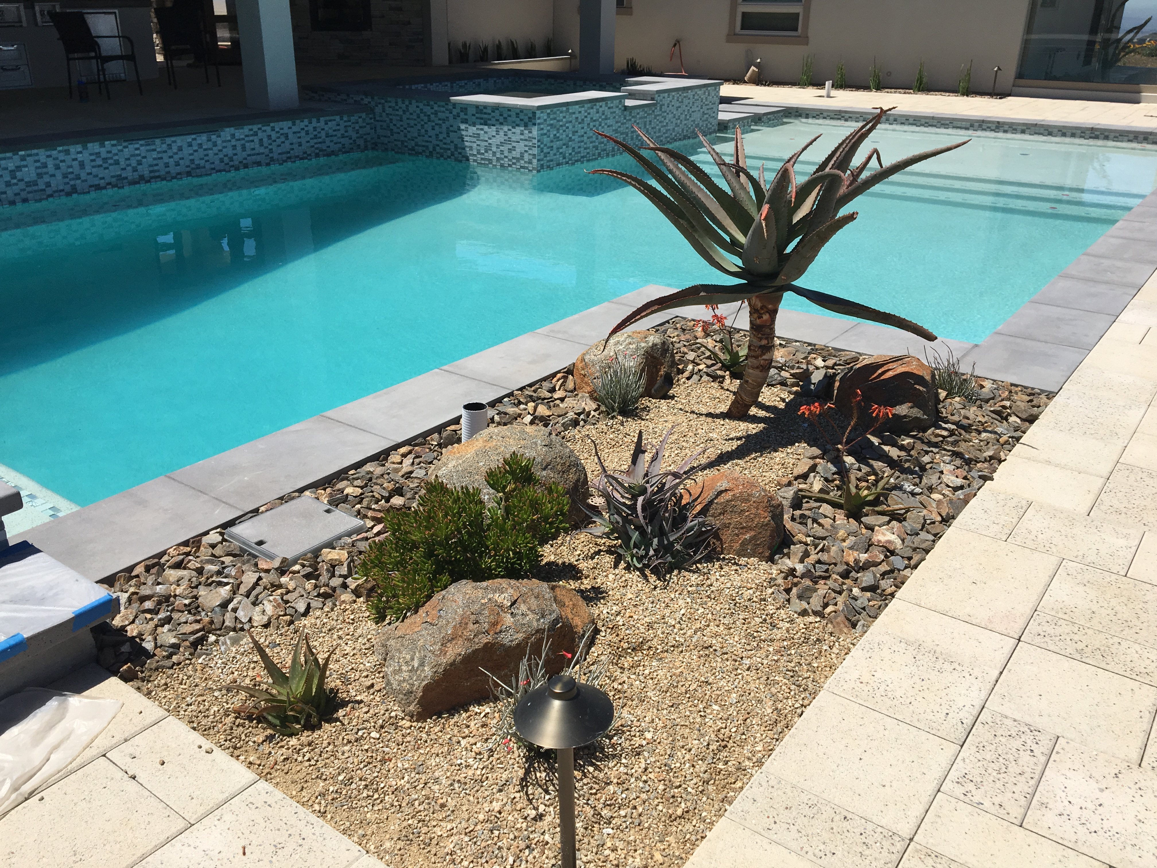 Pala Poolside Low Maintenance Pool Garden Garden Rythms